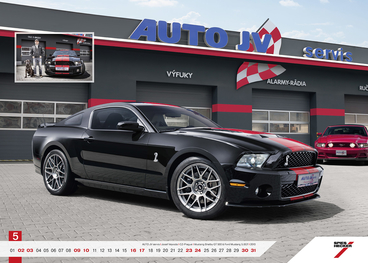 Ford mustang servis