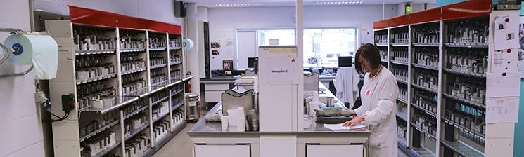 01_CD_SH_Colour Lab_Mood-745x224